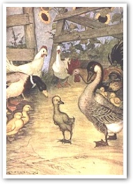 The Ugly Duckling by Hans Christian Andersen: A Tale of ...