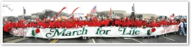 March-for-Life-Banner.jpg