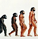 Apes R Not Us: Catholics & the Debate Over Evolution