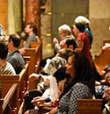 Let's Study the Impact of the Traditional Latin Mass