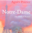 What the Notre-Dame fire did to France