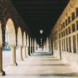 On not buying into the mythology of 'prestige' universities